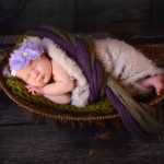Heather Gaydeski Photography newborn sessions-26